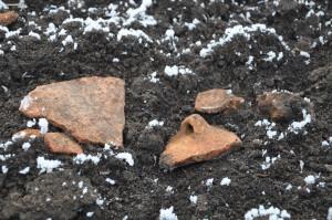 Ceramică de Cucuteni la suprafaţa solului, distrusă de arătură
